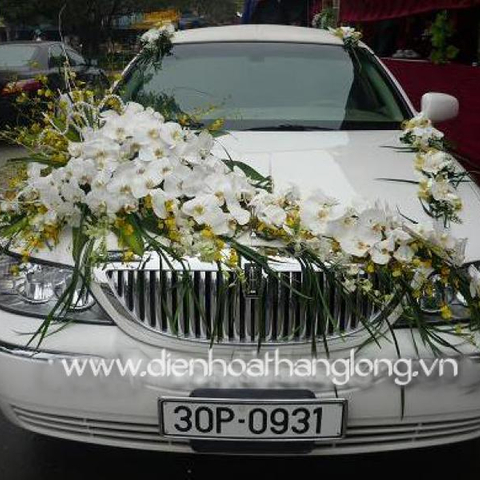 WEDDING CAR 013
