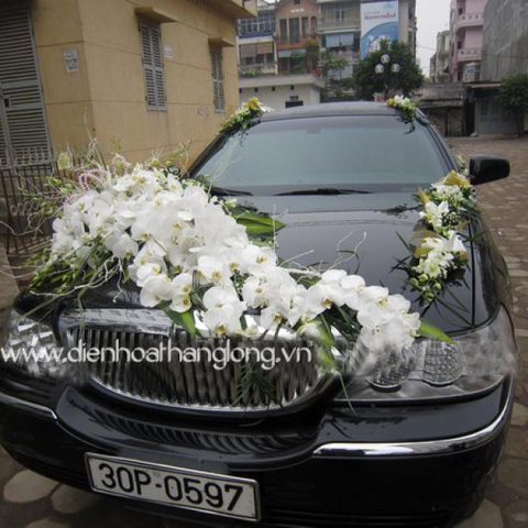 WEDDING CAR 014