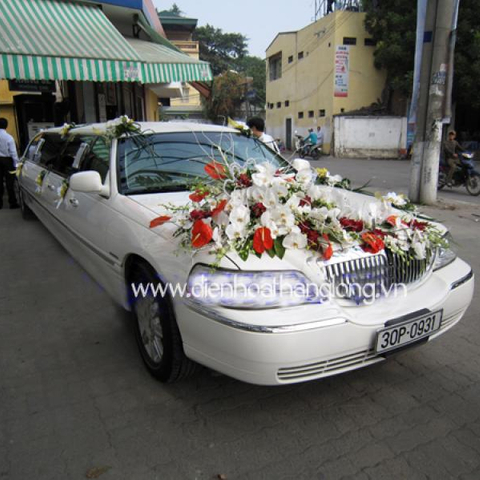 WEDDING CAR 015