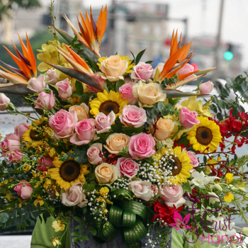 Send flowers to Hanoi online free ship