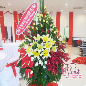 Send congratulations flowers to Hanoi free shipping