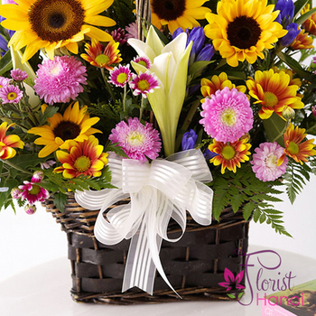 sunflower for birthday in hanoi free shipping