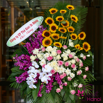 Hanoi Opening Congratulations flowers free ship
