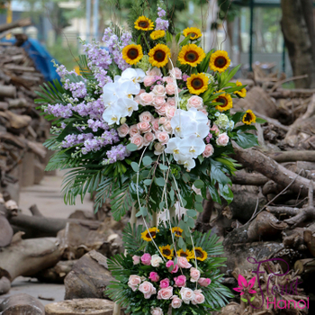 Hanoi beautiful congratulations flowers free ship