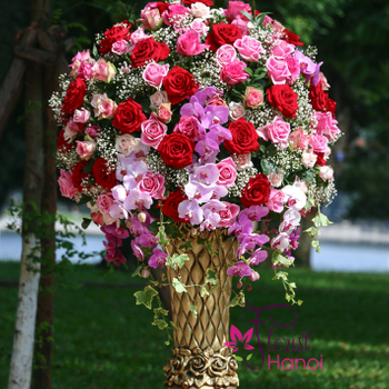 Luxury flowers for congratulation in Hanoi