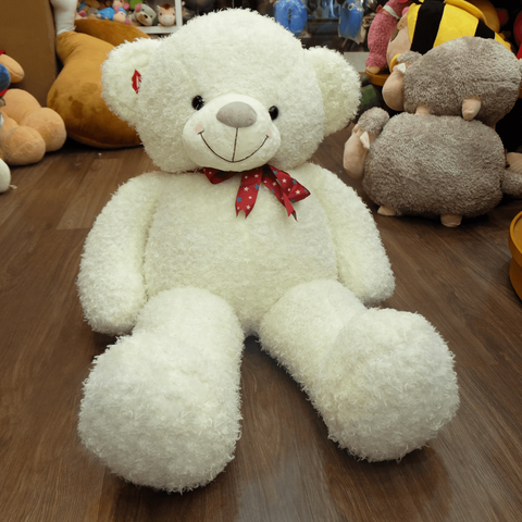 Hanoi white teddy bears