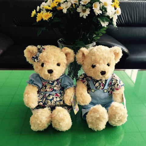 Couple Teddy Bears