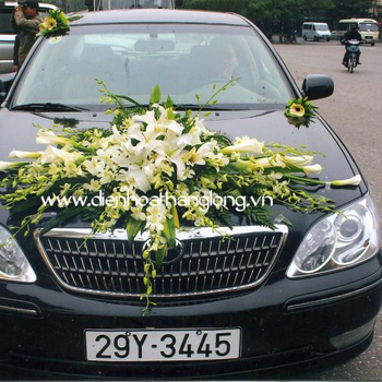 WEDDING CAR 009