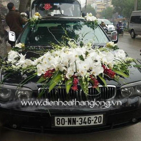 WEDDING CAR 010