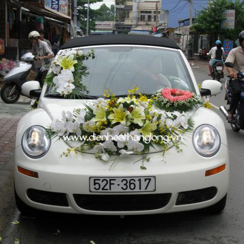 WEDDING CAR 012