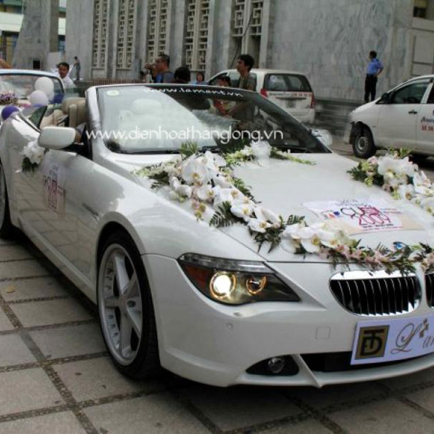 WEDDING CAR 016
