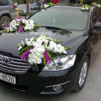 WEDDING CAR 018