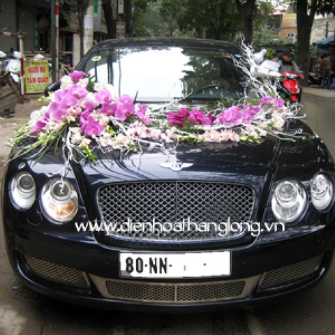 WEDDING CAR 019