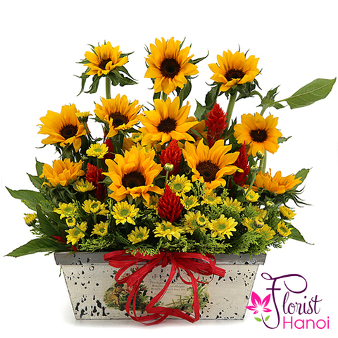 Good morning Hanoi with sunflower basket
