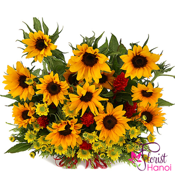 Good morning Hanoi with sunflowers basket online