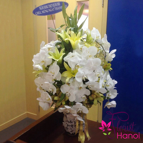 Vip flowers with white orchid in Hanoi