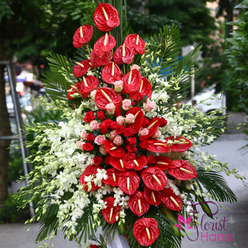 Grand opening congratulation flowers free delivery Hanoi