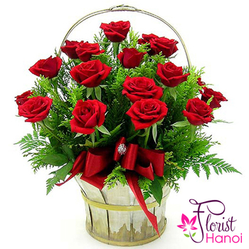 Red Christmas roses