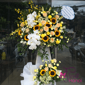 Flowers for congratulation in Hanoi free delivery