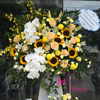 Flowers for congratulation in Hanoi free shipping