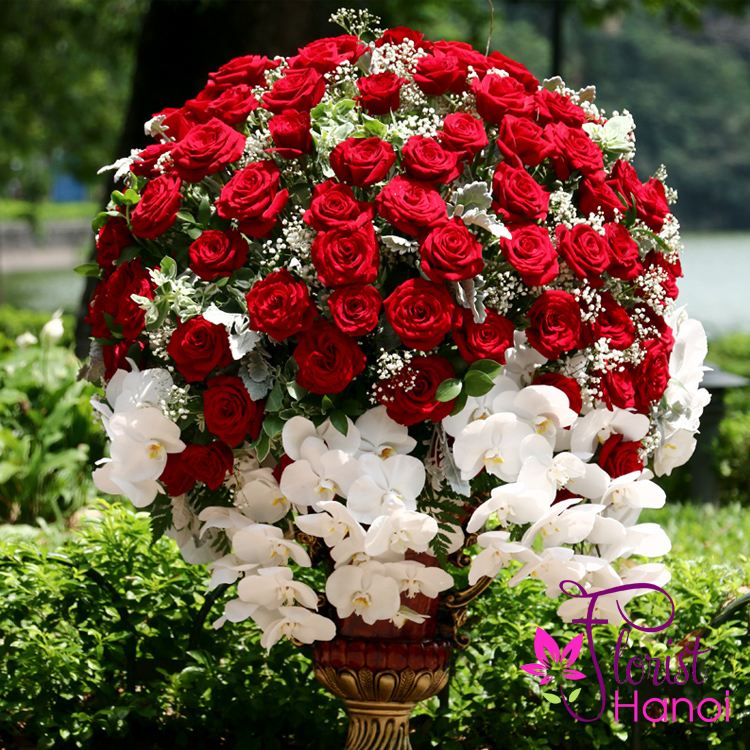 VIP flowers free delivery in Hanoi red roses
